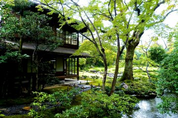<p>Japanese-style building and a pond</p>