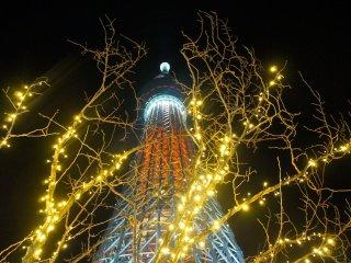 Lampu Natal dengan Skytree di latar belakang seperti yang terlihat dari lantai 7 dari Solamachi Mall