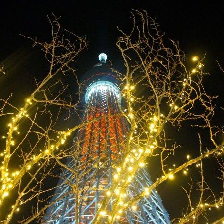Christmas Lights at Tokyo Skytree