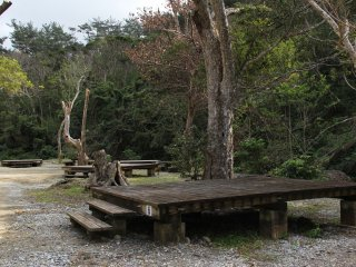 The campground sites are ingenious wooden platforms onto which tents may be pitched