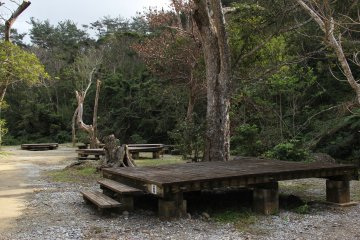 <p>The campground sites are ingenious wooden platforms onto which tents may be pitched</p>