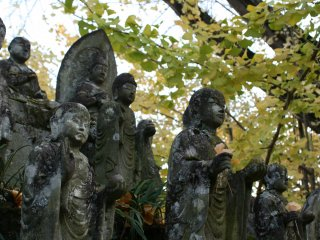 The leaves fall, their short existed contrasted by the hard stone of the statues.