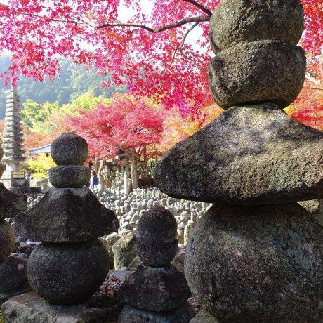 Lovely Adashino Nenbutsu-ji Temple