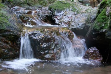 <p>Moving water</p>