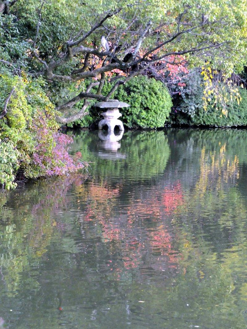 연못의 아름다운 고요한 부분
