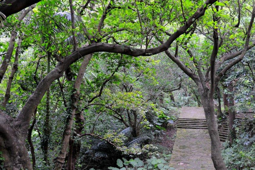 Каменная дорожка, ведущая к мосту