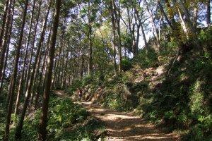 Approaching the summit of Mt. Takasashi