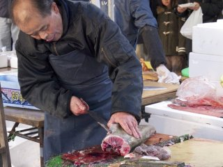Nothing could break this fish monger's concentration.