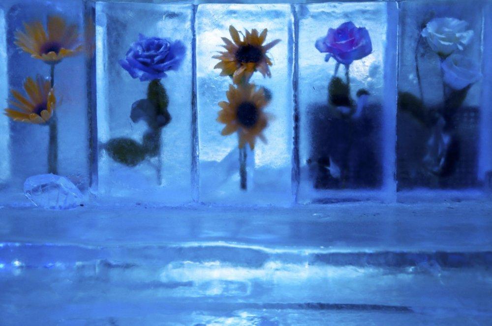 Tất cả mọi thứ bên trong (tường, quầy, bàn ghế,...) đều được làm từ đá lạnh.