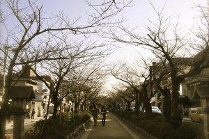 บรรยากาศถนนนอก วัดโคโตกุอิน
