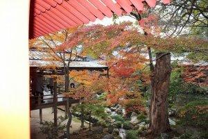 大覚寺境内の中庭