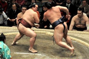 Tochinowaka and Kisenosato charge at each other