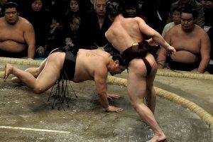 Takanoyama wins against Yoshikaze