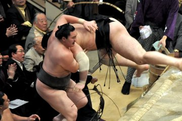 As Hakuho falls he pulls Kotooshu with him...