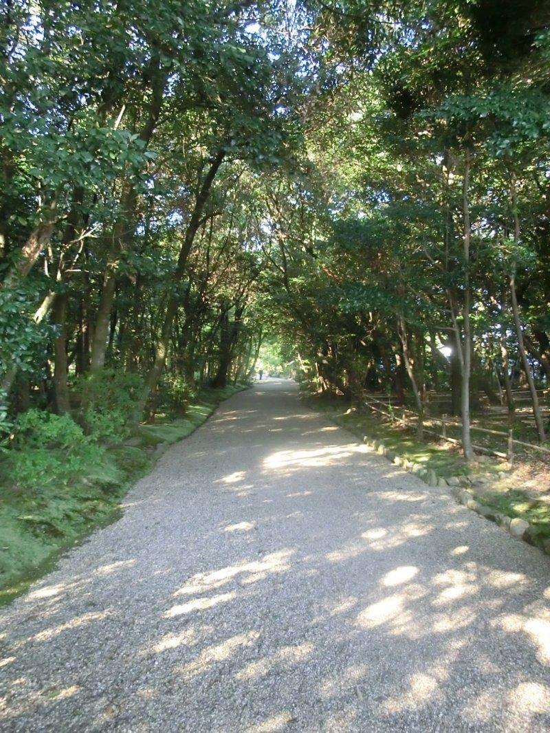<p>Path to Akishinodera temple</p>