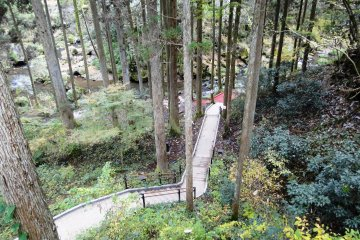 <p>A new path has recently been completed to the base of the falls</p>