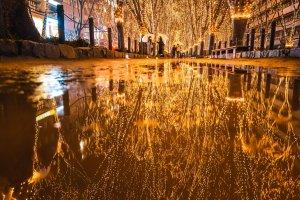 Atraksi Kerlap-kerlip Cahaya Sendai