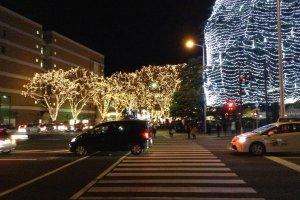 Penyeberangan antara Taman Kotodai dan atraksi utama: pepohonan zelkova yang berhiaskan cahaya lampu.