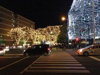 Crosswalk between Kotodai Park and the main attraction: the illuminated zelkovatrees.