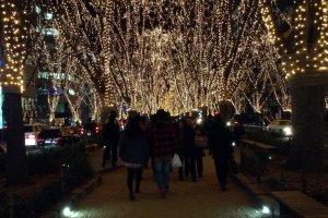 A rua tem uma divisão ao centro que pode ser passeada pelos visitantes, levando-os mesmo por baixo das luzes