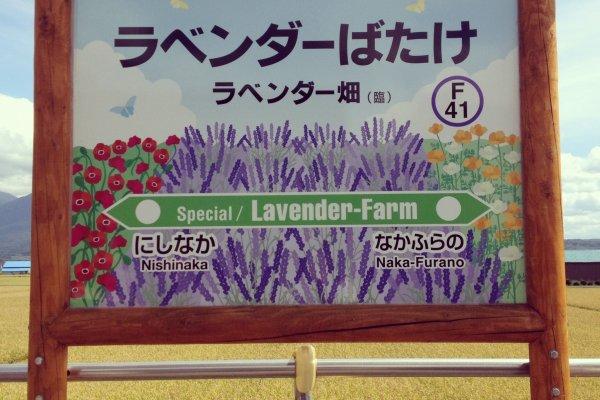 ป้ายสถานีลาเวนเดอร์ฟาร์ม