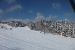 One of the runs at Spring Valley.
