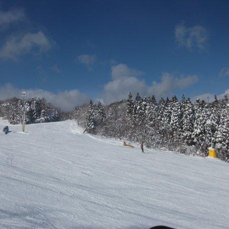 Resort Ski Spring Valley