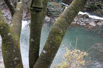 All the rooms face the Hayakawa River and the murmuring of the stream will sooth and heal your body and soul
