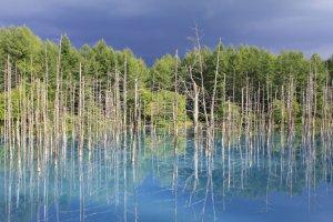 เปรียบเทียบสีฟ้าขอผืนฟ้าและผืนน้ำ