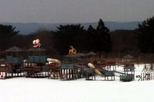 Children will surely enjoy the large play area right outside the log houses. However, it wasn't popular on this winter day.