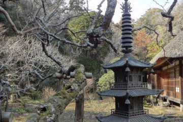 A pagoda-like stone lantern as well as a tall metal lantern—with Hojo in the background—creates a beautiful, traditional Japanese scene.