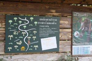 ป้ายให้ความรู้เรื่องราวเกี่ยวกับช้างไทยที่เป็นภาษาไทยซึ่งเราเห็นแล้วก็อดที่จะยิ้มตามไม่ได้