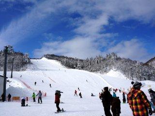เมื่อถึงลานสกี ลานสีขาวขนาดใหญ่ก็ถูกแต่งแต้มด้วยสีสันของชุดนักสกีและนักสโนว์บอร์ด ที่นี่มีลานสกีขนาดใหญ่ถึง 3 โซน คือ โซนเหนือ โซนกลาง และโซนใต้ นักท่องเที่ยวจำนวนมากต่างเพลิดเพลินกับกิจกรรมของตน การเคลื่อนไหวอย่างรวดเร็วและน่าทึ่งเหล่านั้น ทำให้ผู้ชมอย่างเราๆแค่ยืนมองก็รู้สึกสนุกไปด้วยแล้ว