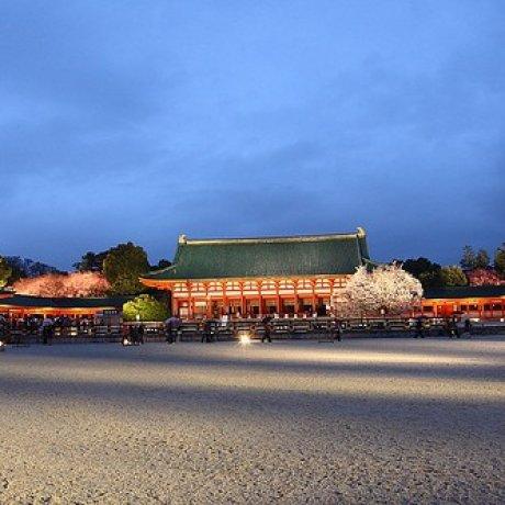 必看! 如夢似幻的京都夜櫻 - 平安神宮音樂會