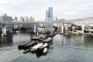 วนรอบอ่าวโตเกียว ยื่นเข้าไปในทะเล