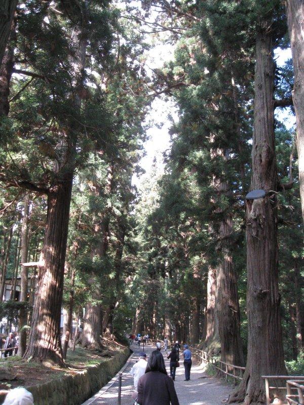 Approach to Chuson-ji