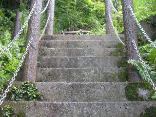 정상을 위해 올라가는 계단