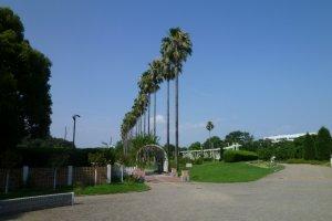 Khu vực nhiệt đới của công viên Nagai