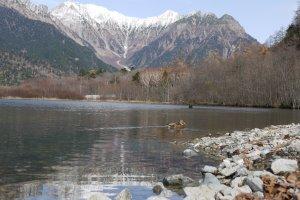 Taisho Pond และภาพของเืืืทือกเขา Hotaka สะท้อนบนพื้นน้ำ มีนกน้ำว่ายอยู่