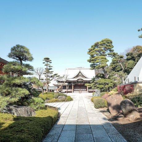Temple Ikegami Honmonji