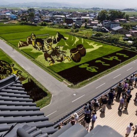 Inakadate Rice Art Fields