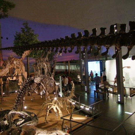 Fukui Prefectural Dinosaur Museum