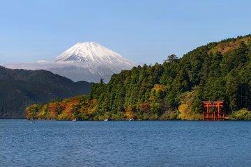 Hakone Highlights Guided Tour, Hakone Free Pass Option