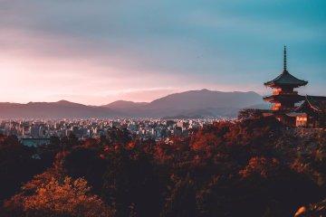 Japan Tour (Halal): Osaka, Kyoto, Nara and Tokyo