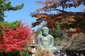 Top Kamakura Spots Guided Tour